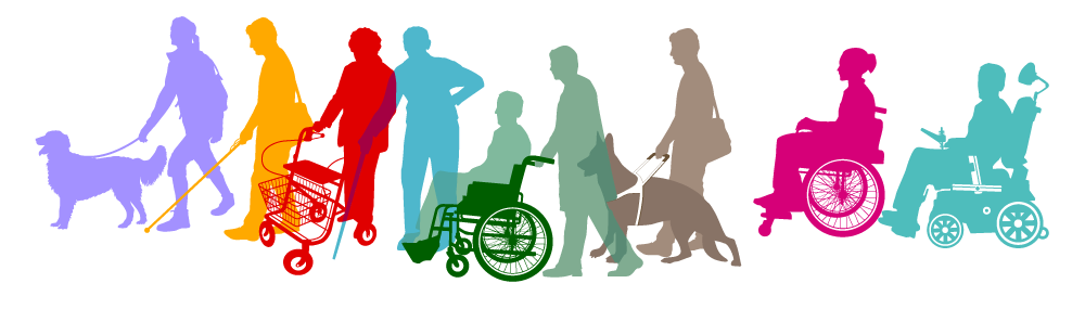 disability covering all levels